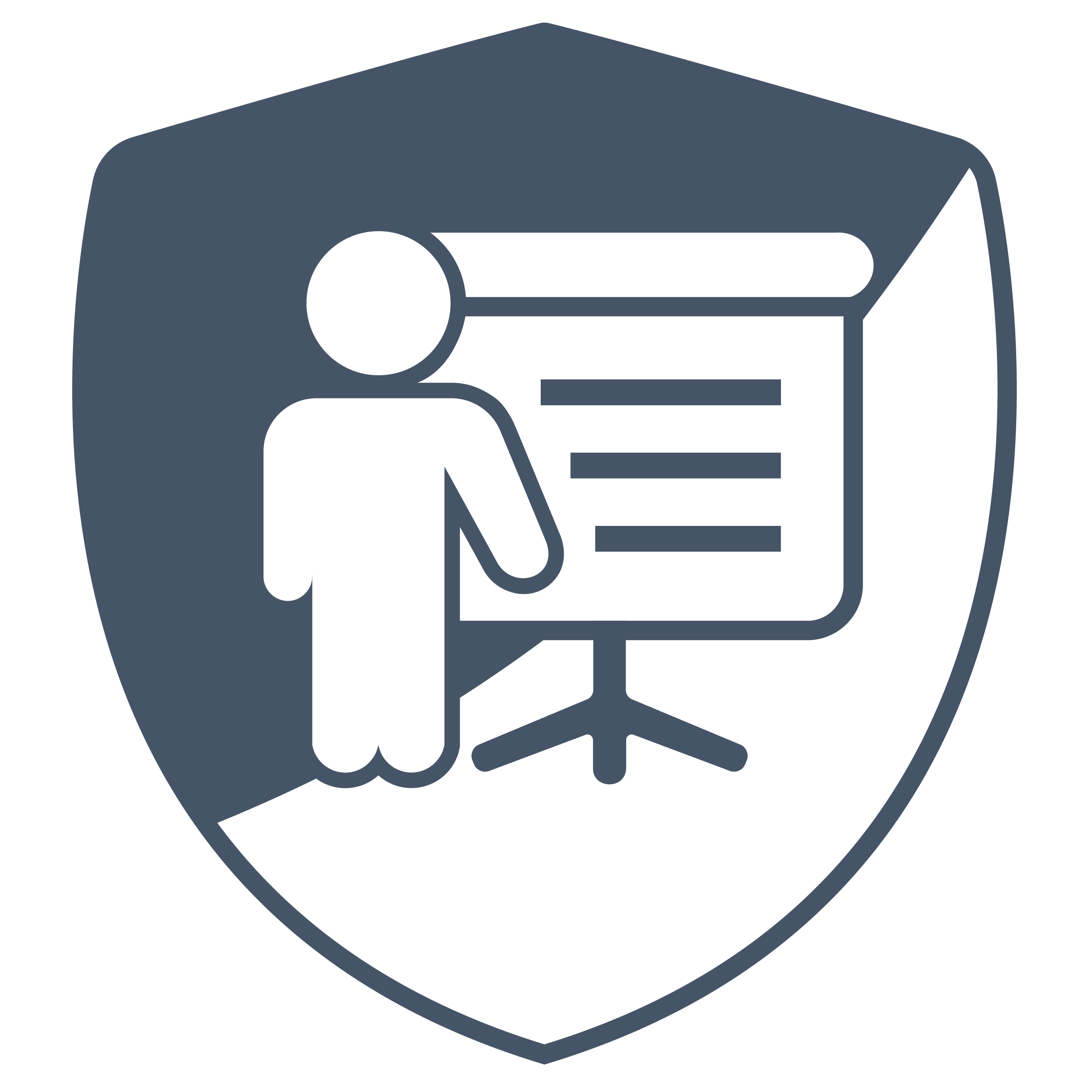 Pragmatic Web Security logo